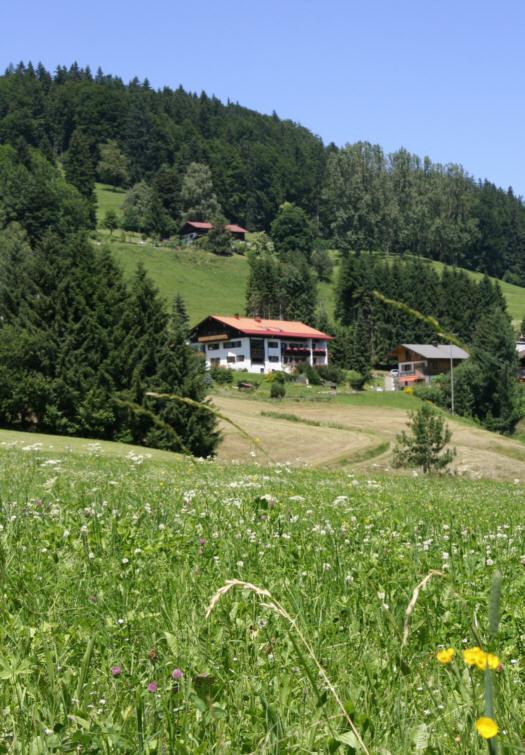 Sommerurlaub im Berghof Mehlan - gemütliche Ferienwohnungen bei Oberstdorf und Fischen